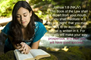 Joshua 1 8