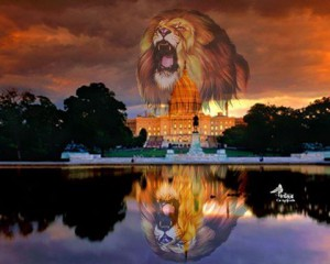 lion-of-judah-dc